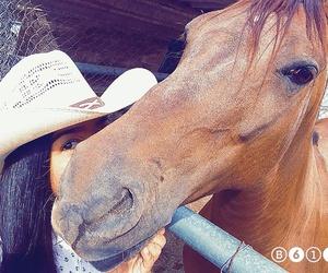 rancho, charra, and méxico image