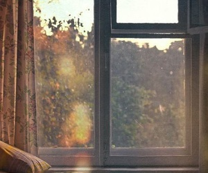 window, bed, and sun image