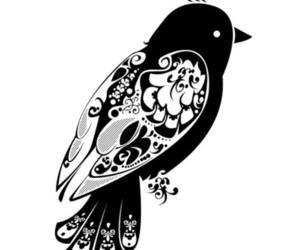 colors, aves, and kawaii image