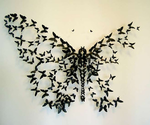 butterfly, black, and art image
