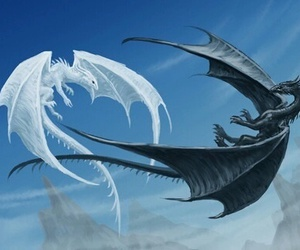 black, dragon, and white image