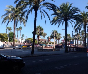 Barcelona, palm, and summer image