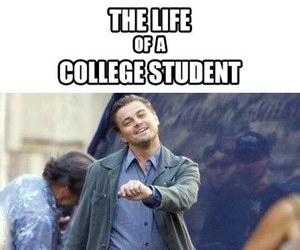 funny, college, and student image