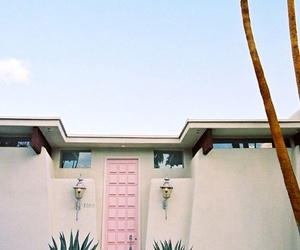 palms, summer, and house image