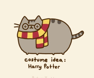 harry potter, pusheen, and cat image