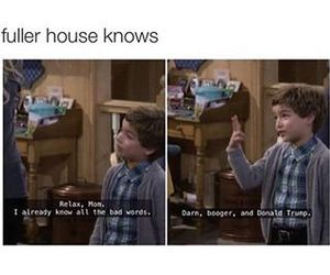 funny, fuller house, and lol image