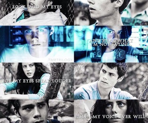 fandom, maze runner, and thomesa image