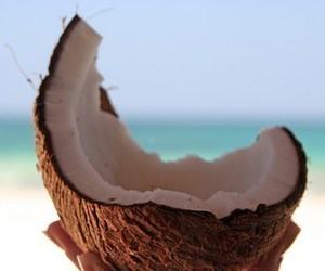 coconut, pink, and summer image