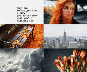 aesthetic, autumn, and new york image