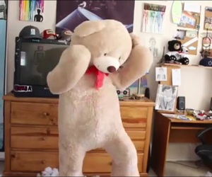 teddy bear, video, and youtube image