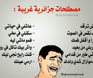 arabic quotes, akremmebrouk, and algerienne dz 213 image
