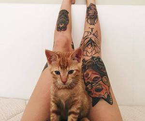 cat, tattoo, and legs image