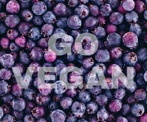 fruit, vegan, and blueberry image