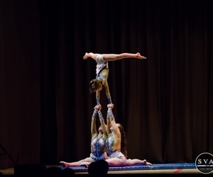 gymnastics, performance, and show image