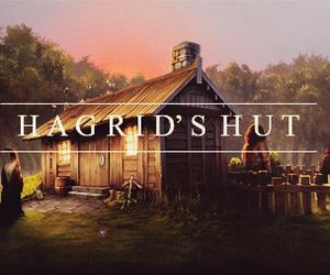 harry potter, hogwarts, and hagrid's hut image