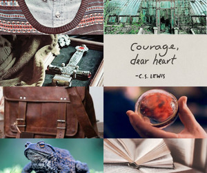 aesthetic, books, and courage image
