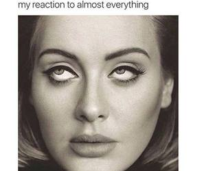 funny, lol, and Adele image