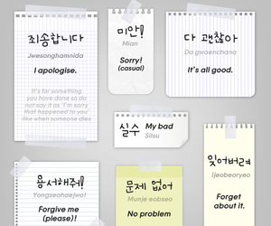 korean and apologies image