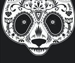 panda, wallpaper, and black and white image