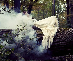 forest, mist, and nymphs image