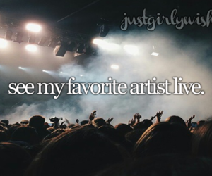 concert and bucket list image