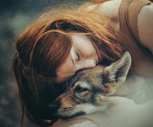 girl, wolf, and ginger image