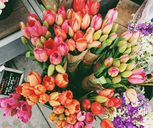 colours, happy, and flowers image