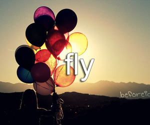 fly, balloons, and before i die image