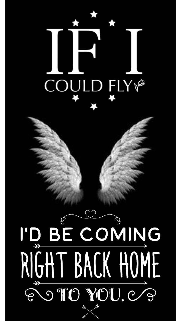 If I Could Fly One Direction Lyrics Wallpaper