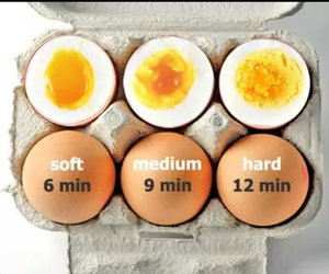 eggs and food image