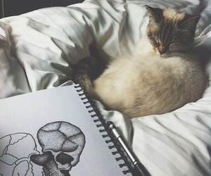 cat, art, and heart image