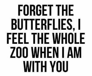 love, quotes, and butterfly image