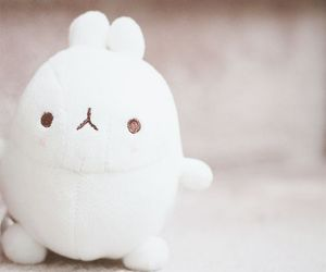 white, molang, and cute image
