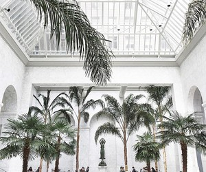 white, architecture, and palm trees image