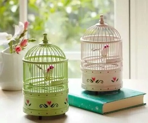 bird, vintage, and cage image