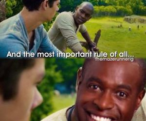 funny, thomas, and maze runner image
