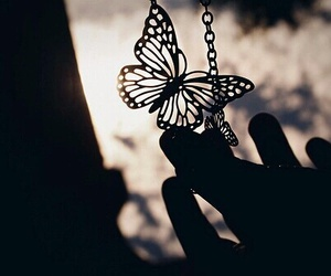 butterfly, photography, and necklace image