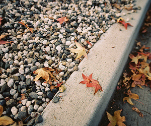autumn, pebbles, and fall image
