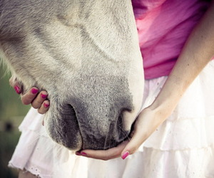 girl, horse, and pink image