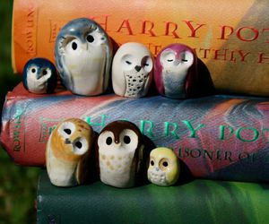harry potter, owl, and book image