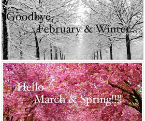february, march, and seasons image