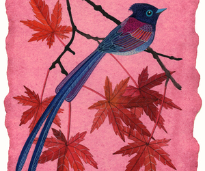 bird, pink, and maple image