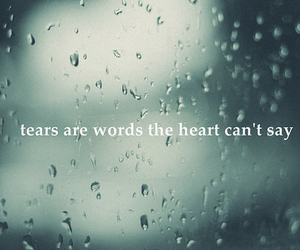 life, rain, and quote image
