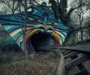abandoned, berlin, and cat image