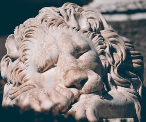 lion, sculpture, and statue image