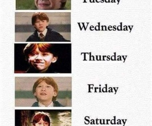 harry potter, ron weasley, and week image