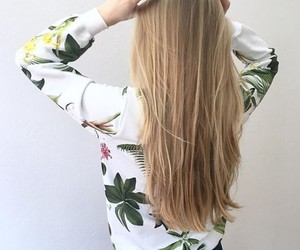 blonde, hair, and palms image