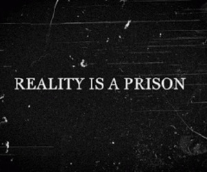 black and white, quote, and reality image