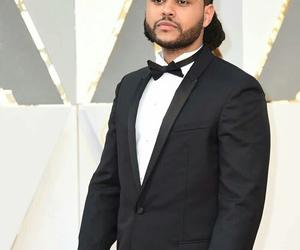 oscar, Academy Awards, and red carpet image