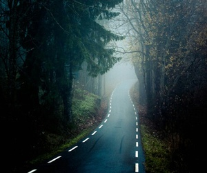 road, forest, and tree image